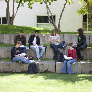 Students studying in the amphitheater