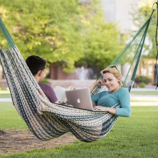 Students in a hammock in the spring