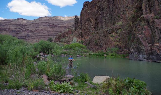 A student fly fishing in a canyon