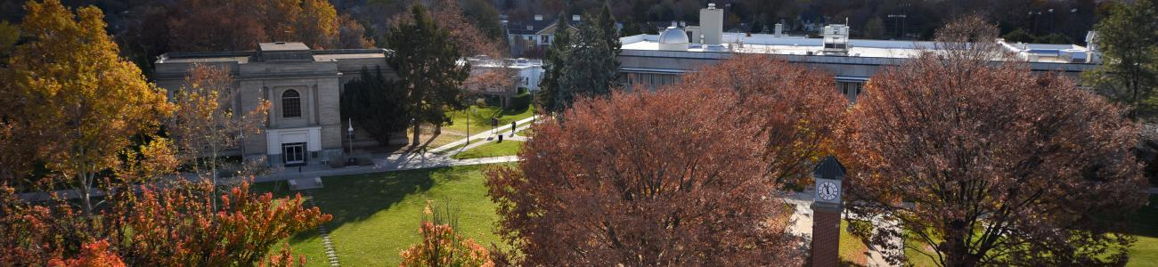 Campus from Sterry Roof