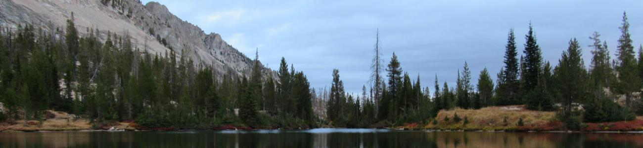 View at Alice Lake